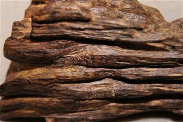 沉香和沉香木的区别鉴别大全