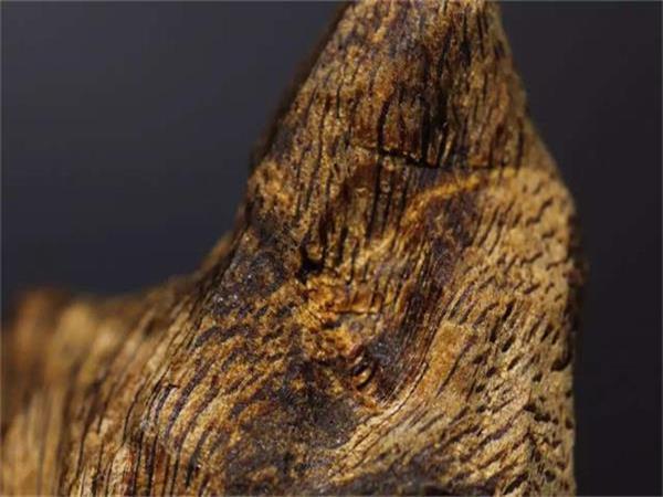 莺歌绿(绿奇楠)的香韵、特征以及鉴别方法