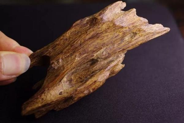 奇楠沉香中的顶级品种——绿奇楠